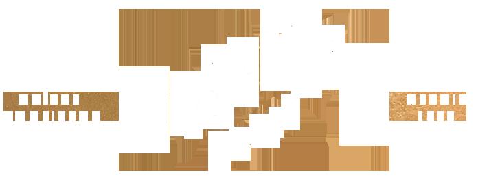 logo-boissier-blanc