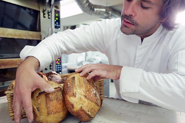 qui_est_gontran_cherrier_meilleur_boulanger_de_france_tiller